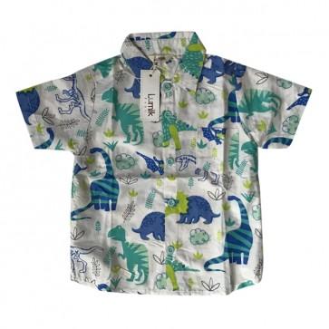 lumik-Green Dinosaurus Baby Shirt-